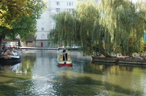 The Regents Canal and willow trees on the Island at Brownings Pool